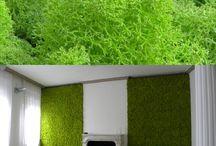 Vegetal Acoustic Design