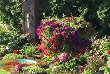 My garden and things I've created. / My yard