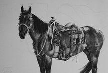 Horses / by Amanda Price
