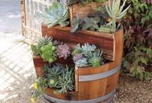 Garden Ideas / Ideas for my yard. / by Robin Walker