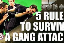 Gang Attacke/mehrere