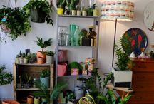 Boutique Fleurenplume / Les ambiances de la boutique Fleurenplume