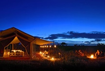 Lowis & Leakey | Private mobile Camp  / Our favourite way to be on safari is in a mobile tented camp - it doesn't get better than this!