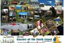 CM17046 Glaciers of the South Island