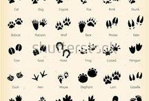 Animals paw tattoo ideas