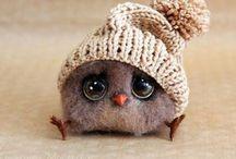 Gufi&Co/Owls&Co.