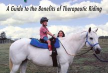 Therapy Horse Riding & Vaulting
