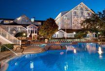 Gorgeous Disney Hotels