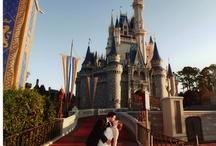 Fairy Tale Wedding Theme / Fairy Tale Wedding Theme