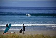 On road / #discover #travel #video #surf #longboard #logging #vanlife #quasimoto #Burrifornia #Burriana