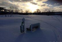 Park Golf v zimě