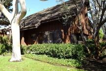 The Gardens Townhomes- San Pedro