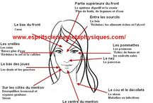 boutons conseil