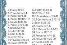 Summer bible reading