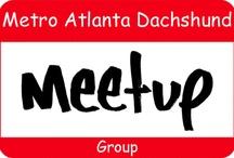 Metro Atlanta Dachshund Meetup Group (MAD MUGs)