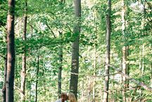 Our engagement Photos / by Britt Calhoun