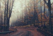 season || autumn