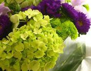 Flower arrangement  / by Dena Galley
