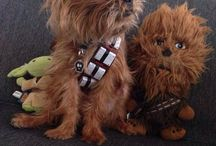 GeekDogs / Spielzeuge für Hunde