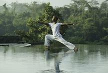 Java 'Luxury Spa and Yoga' Retreat