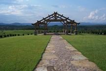 South Carolina Weddings / by Discover South Carolina