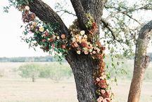 Wedding colors/flowers