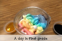 Student Teaching- 1st Grade / by Alexandra Sommers
