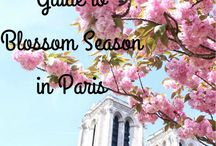Paris   The Glittering Unknown / Things to do and eat and see in the City of Lights