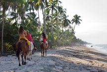 Reserva Natural El Matuy  / Una de las reservas naturales más lindas de Colombia rodeada de playa, naturaleza y mar. Se encuentra ubicada en el Municipio de Palomino, a 70 Km de Santa Marta y a 90 Km de Riohacha, lo que la hace muy fácil acceso desde ambas ciudades (1 hora aprox.). La Reserva tiene una extensión de 12 Hectáreas donde se encuentran 4K de playa, ríos, bosque tropical seco, manglares y lagunas, donde habitan aves migratorias y otras especies.