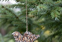 how to make birdseed ornaments / I THINK THIS WOULD MAKE A GREAT TREAT FOR THE BIRDS