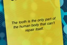 Tooth Facts / Did you know these fun facts?