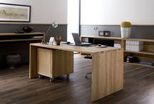Pracovny a kanceláře / Každý má rád svůj prostor, a pokud Vám to dispozice Vašeho bydlení dovolí, ideálním místem, kde můžete nerušeně pracovat a případně se schovat před okolním světem, je domácí kancelář.