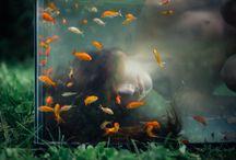 Renata Ramsini Shoot / by Ann Lowery Black