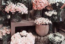 Flowers ;)