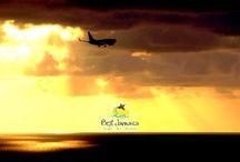 Montego Bay Airport Taxi Service