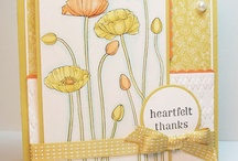 Cards - Stampin Up / by Amy Sampson