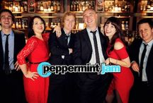 Peppermint Jam - Cover Band - Sydney / Book live music for corporate #events #weddings or #parties through #instinctevents & #entertainment www.instinctmusic.com.au