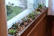 window sill box