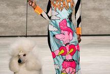 Outrageous fashion / Outrageous fashion