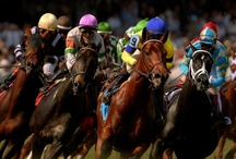 Horse Capital of the World / Everything from people at the Derby, horses, all the crazy hats, drinks to the celebrities and people who attend! In Kentucky, we LOVE the Horse Racing!