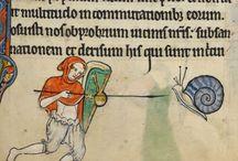 XIII century hoods