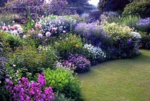 Architecture_outdoors_gardening