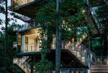 Escaleras / Solo escaleras de madera