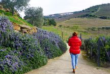 Portugal Travel / The most beautiful places in Portugal.