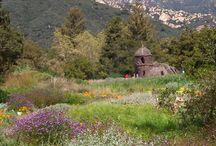 California Botanic Gardens, Arboreta, and Herbariums / California Botanic Gardens, Arboreta, and Herbariums