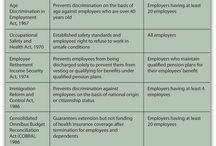 Employment Law (UK)