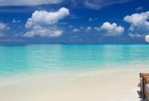 Maldives / by Sabrina Swann-Warren
