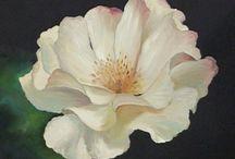 Farabi flora