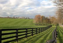 Kentucky. Scenery. Country. Life. / by Ashley Duncan Saylor