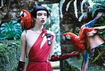 Vogue Tropical